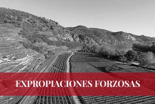 EXPROPIACIONES FORZOSAS